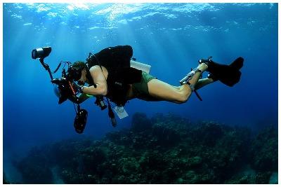 عکاسی زیر آب | تفریحات آبی قشم| گشتانو: رزرو تفریحات آبی قشم|گشتانو:گردشگری در قشم