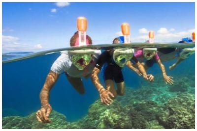 اسنورکلینگ بالی |رزرو آنلاین اسنورکلینگ بالی با قبمت باور نکردنی