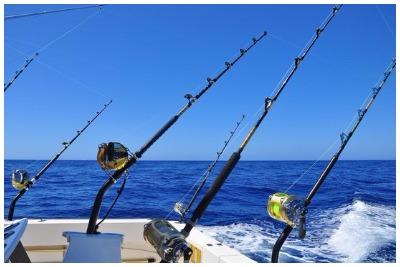 ماهیگیری ترولینگ پوکت | رزرو آنلاین ماهیگیری ترولینگ پوکت با قیمت باور نکردنی