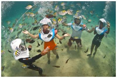 پیاده روی دریایی بالی |رزرو آنلاین پیاده روی دریایی بالی با قبمت باور نکردنی