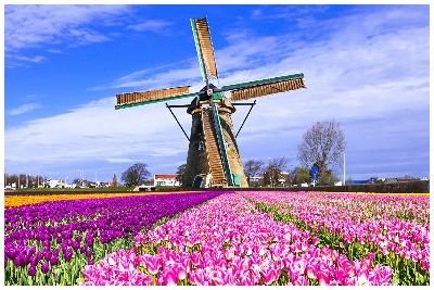 تور هلند با پرواز مستقیم و اقامت 7 روزه در بهترین هتل های کشور هلند